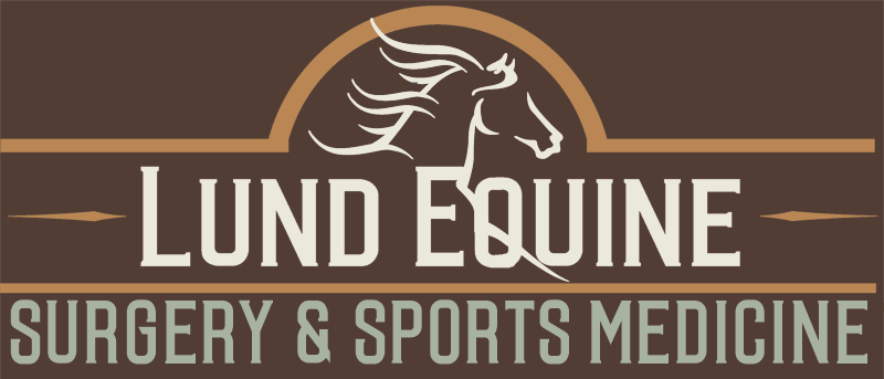 Equine Veterinary Surgeon - Billings,MT